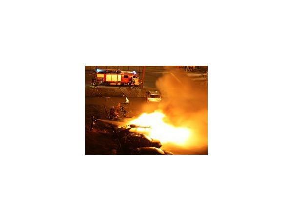 В Приморском районе сгорели дотла две иномарки
