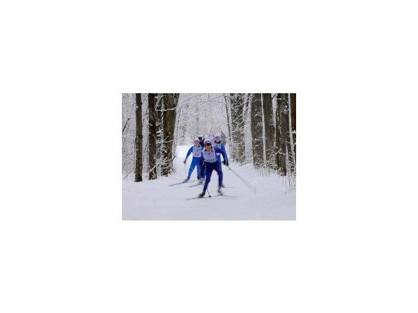 Лыжню хотят застроить коттеджами