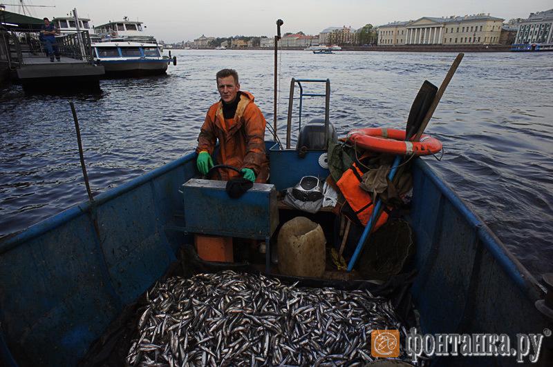 где сейчас рыбаков