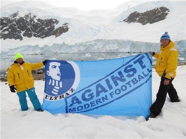 Фанаты «Зенита» добрались с баннером до Антарктиды (Иллюстрация 1 из 1) (Фото: Lanscrona)