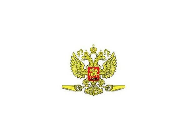Родня засела на Петроградке
