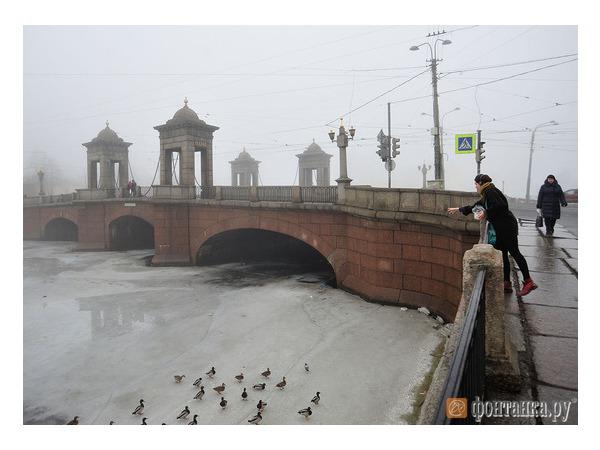 Зима еще вернется в Петербург