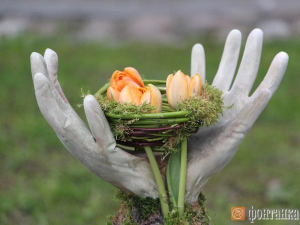 Нафестивале тюльпанов вПетербурге показали цветы, которые раньше доэтого никто не лицезрел