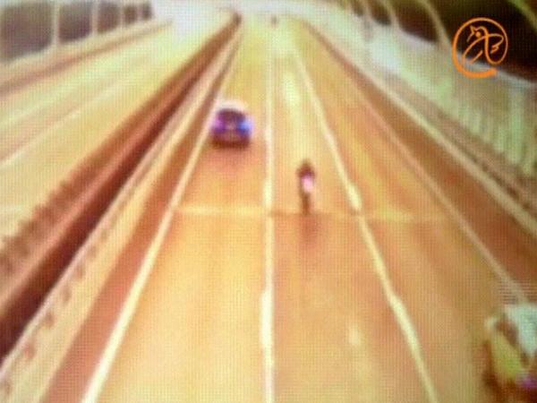 ВПетербурге неудачливый байкер устроил любителям автомобилей «дождь» из12 млн руб.