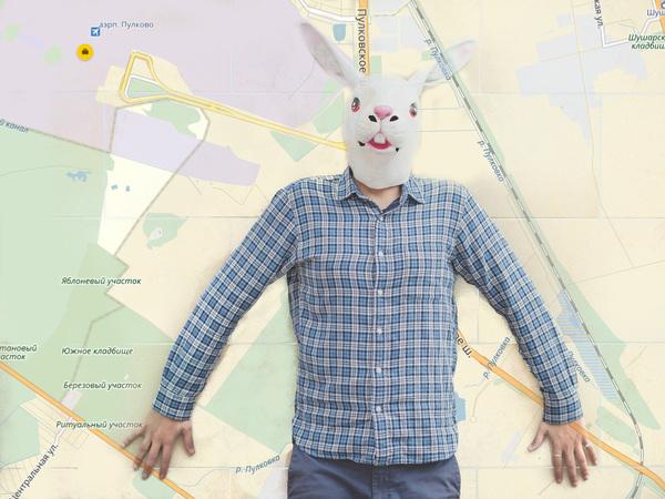 Как виргинские кролики покусились на Пулково