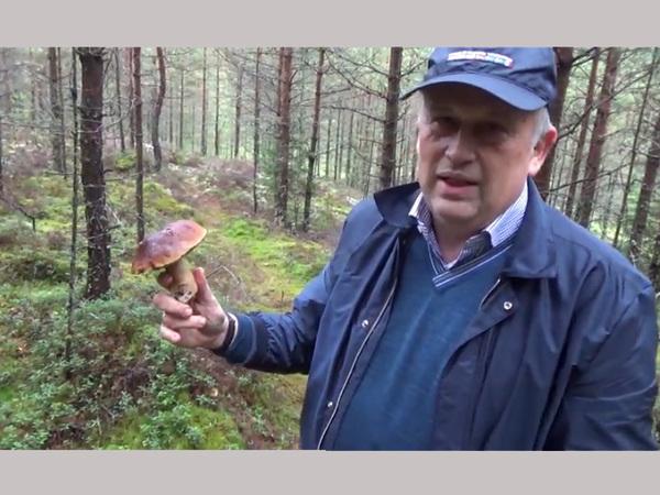 Губернатор Ленинградской области зачитал про грибы под инструментал Pharaoh