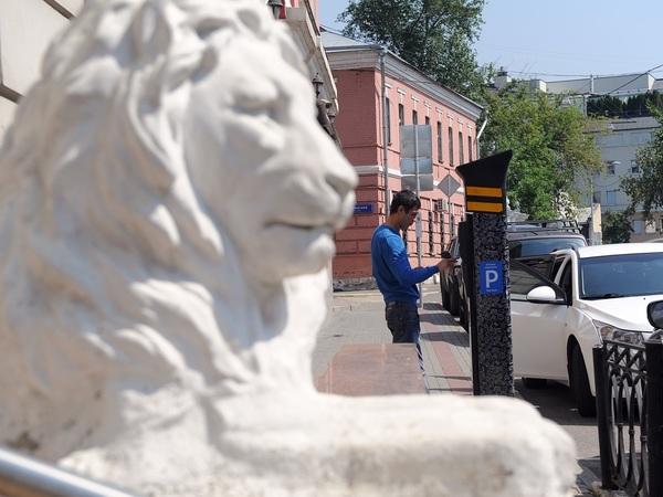 Петербургу просчитают платный центр