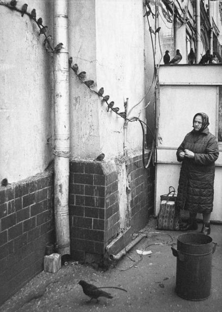 В.Райтман. Воробьи. 1986