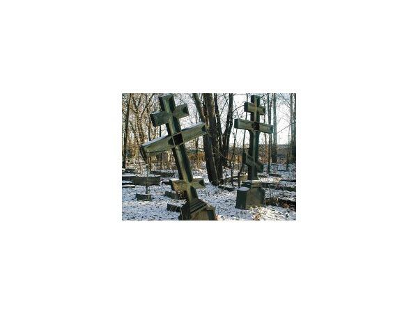 Измайловская перспектива: 400 тысяч могил на 1 гектар