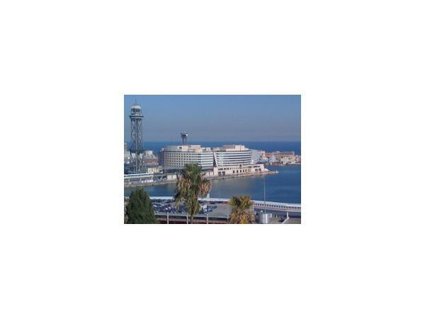 Петербург присматривается к «диагональным» небоскребам