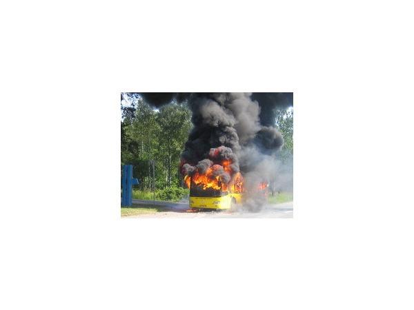 В Курортном районе сгорел пассажирский автобус