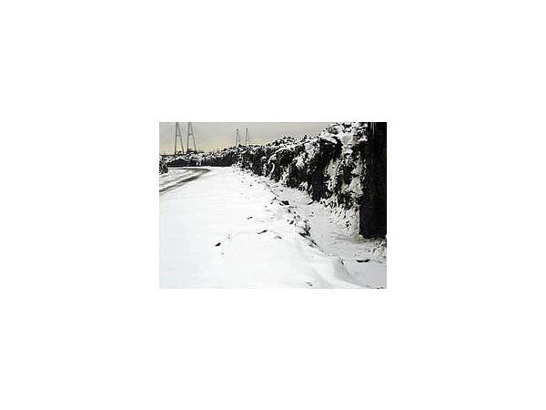 Смольный в ожидании снега