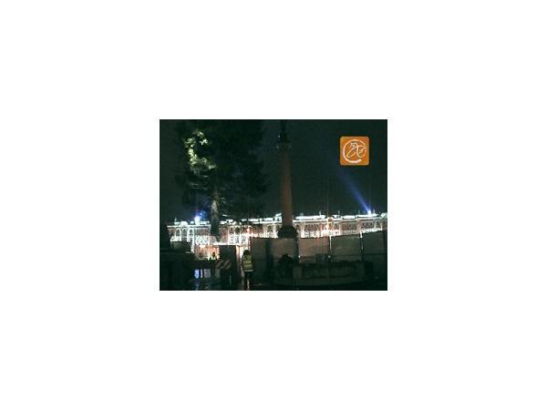 Главная ёлка Петербурга заняла свое место на Дворцовой