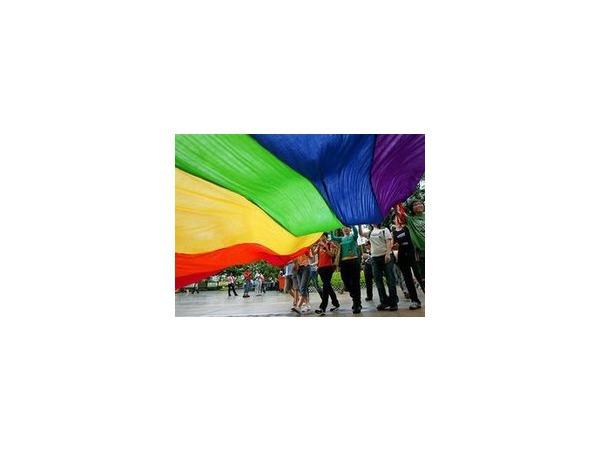 Горсуд разрешил гомофобный закон