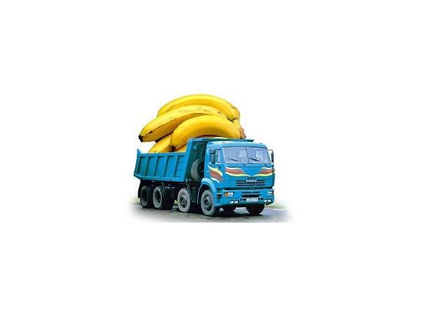 Кредиторы ищут «банановые» деньги Кехмана в рефрижераторах