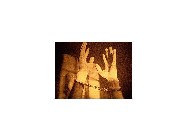 Тюремный спам Венгервельда