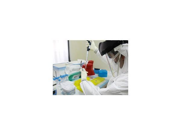Новости о вирусе Эбола: Госдеп США предложил доставлять инфицированных Эболой иностранцев в страну, однако это противоречит американскому законодательству