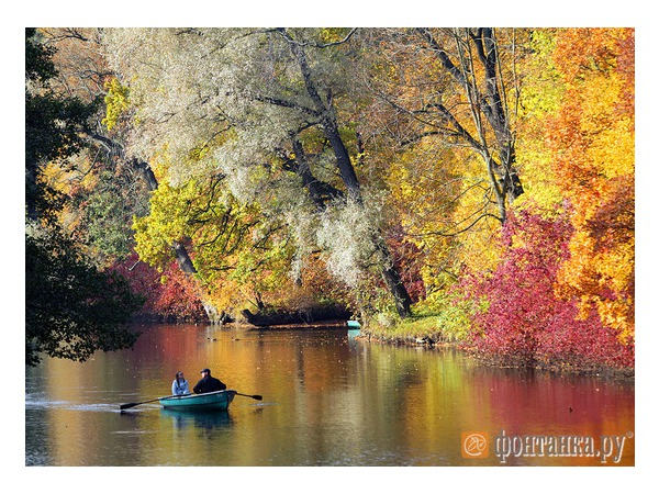 Пришла золотая осень