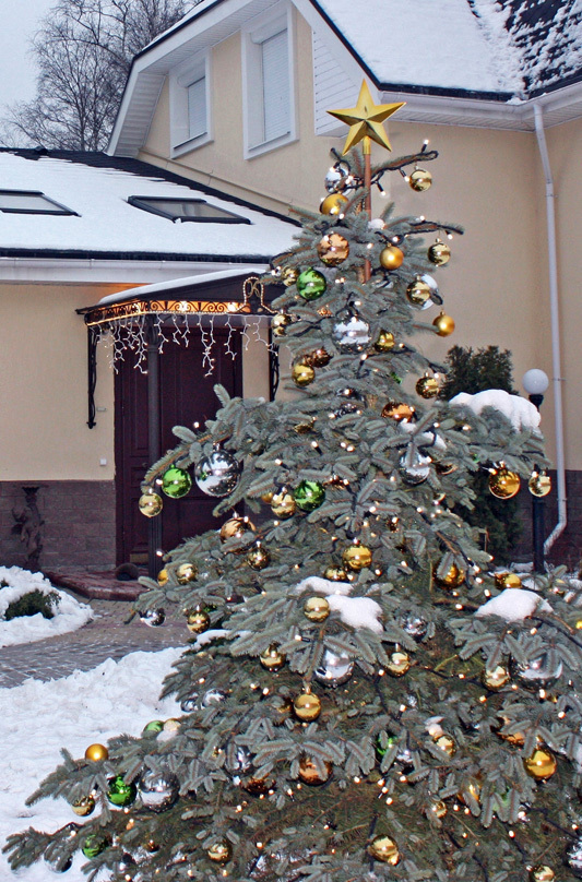 Украшение дома Игоря Корнелюка