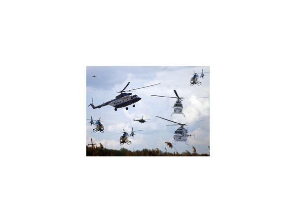 В результате падения вертолета на востоке Франции погибли пять человек