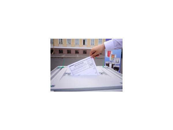 Предварительные результаты выборов в Молдавии 30 ноября 2014 года: пока лидирует пророссийская Партия социалистов