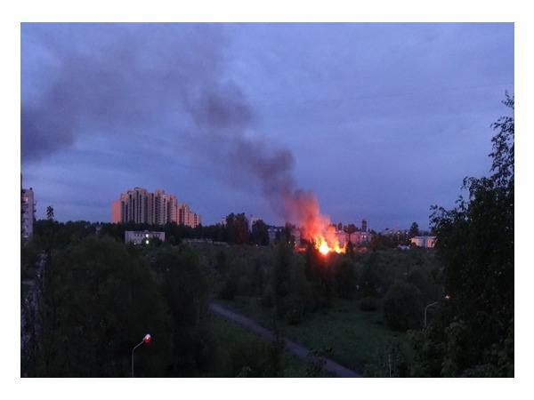В «Блокадном саду» в Металлострое опять сожгли дома