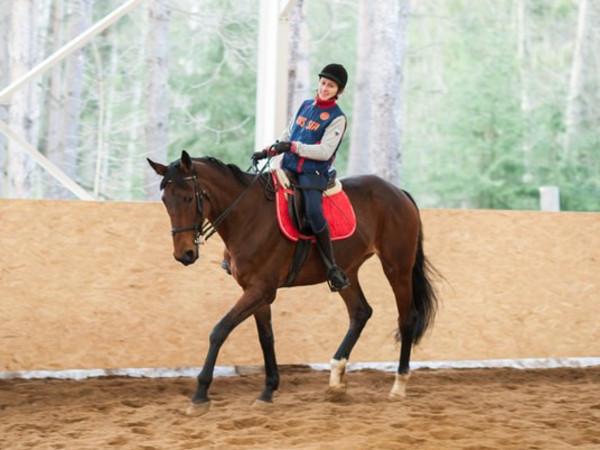 Помогите достроить конный манеж