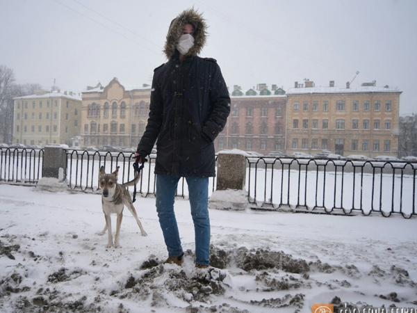 Сильный снег продлится в Петербурге до конца дня