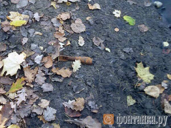 В ЦПКиО вызвали взрывотехников: там нашли мину