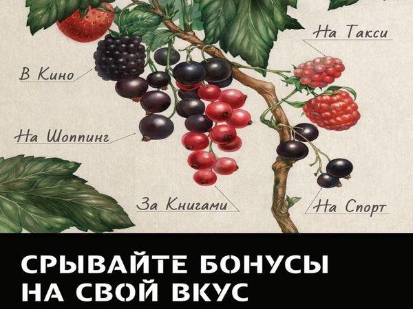 Tele2 запустила всероссийскую акцию «Срывайте бонусы на свой вкус»