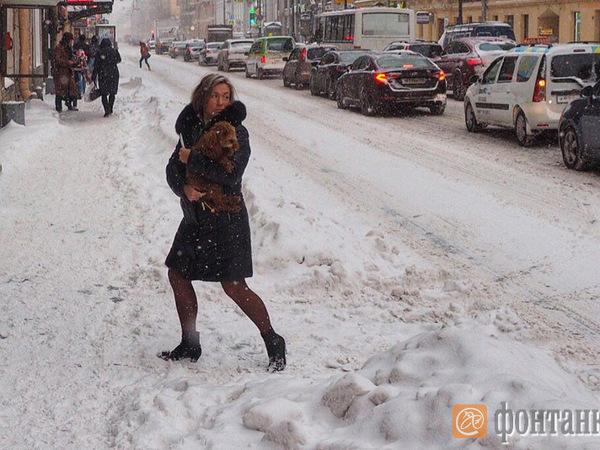 Снежная аномалия: При чем тут глобальное потепление?