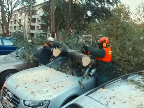 Не менее шести человек погибли в результате ураганных ветров в Европе