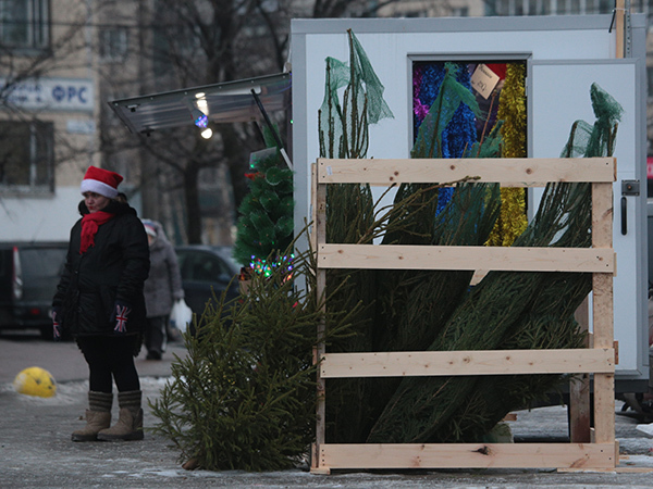 """Ищите новогоднюю ель с картой от """"Фонтанки"""""""