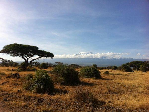 Tele2 расширяет роуминговую сеть в Африке, Азии и Европе