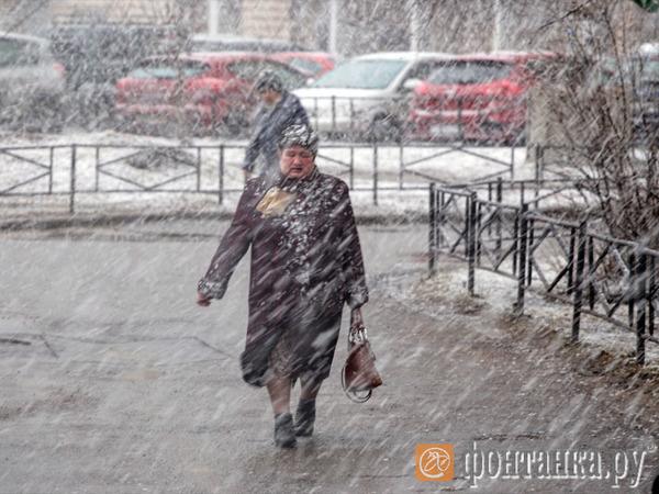 В Петербурге потеплеет к воскресенью