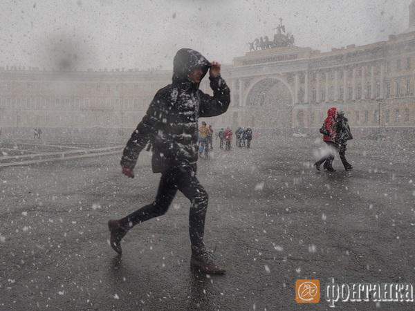 Петербург занесло снегом