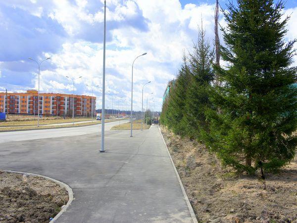 Продолжается программа озеленения «Образцовых кварталов»