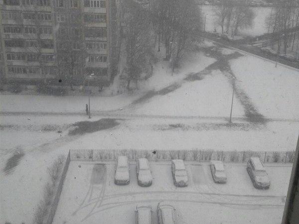 Петербург вместе с Европой заваливает снегом