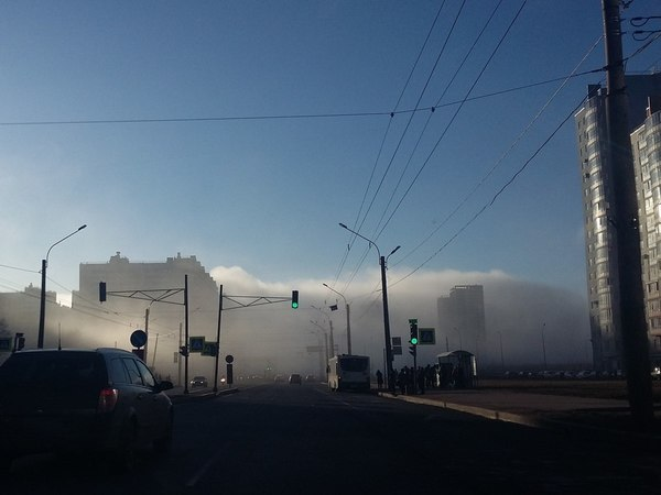 Туман на юге Петербурга посеял панику в соцсетях