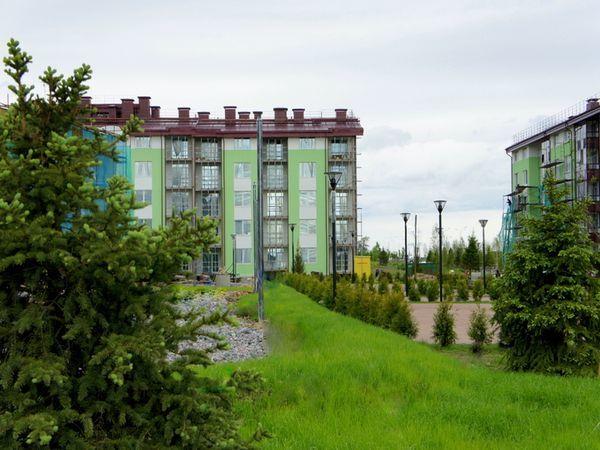 Зелёный квартал на Царскосельских холмах