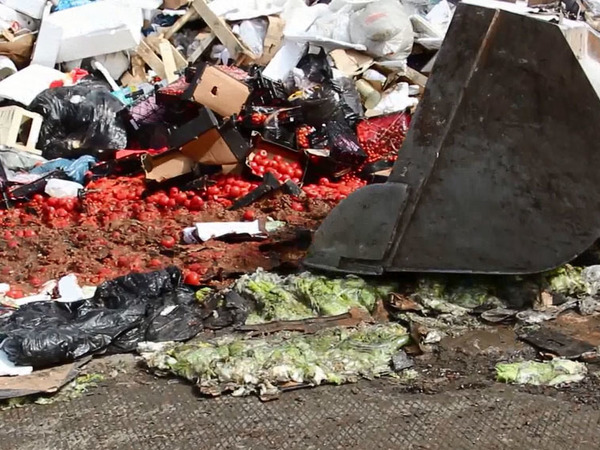 В Петербурге раздавили шесть тонн санкционных овощей и фруктов