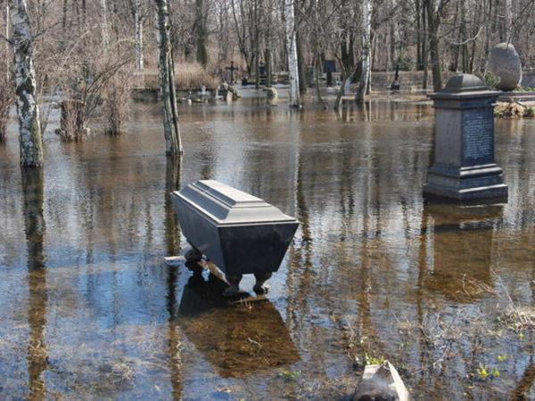 Как самое унылое кладбище Петербурга стало престижным