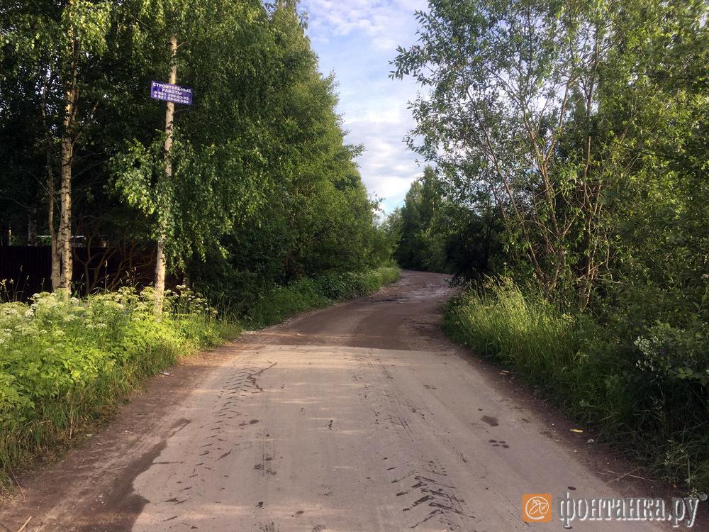 граница Псковской и Ленинградской областей