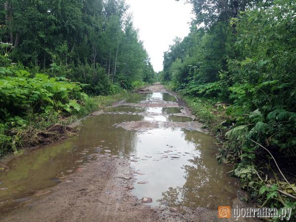 Как жители Псковской области просили об «аннексии»