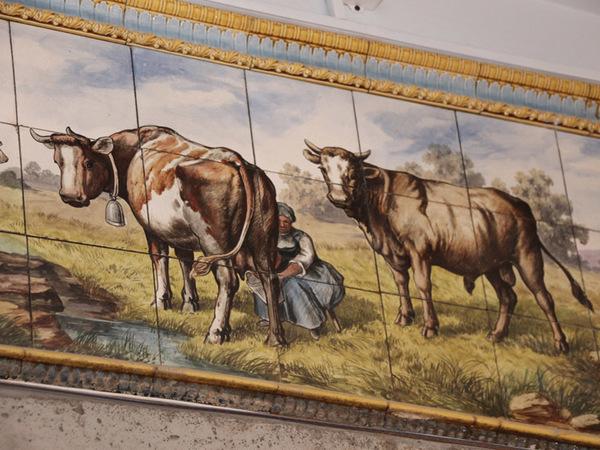 В магазине на Гороховой обнаружили исторические интерьеры молочной лавки