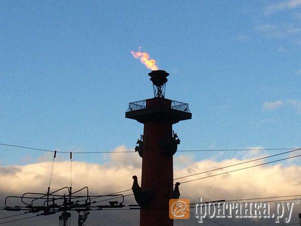 В Петербурге без повода зажглась Ростральная колонна у Дворцового моста