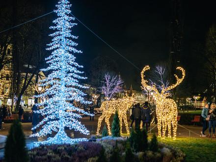 Выходные в Финляндии 1-2 декабря: К Рождеству по волшебной тропе