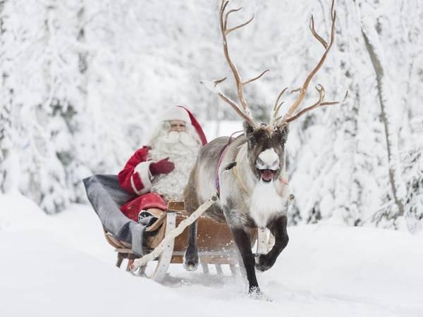 Выходные в Финляндии 22-23 декабря: на пороге Рождества