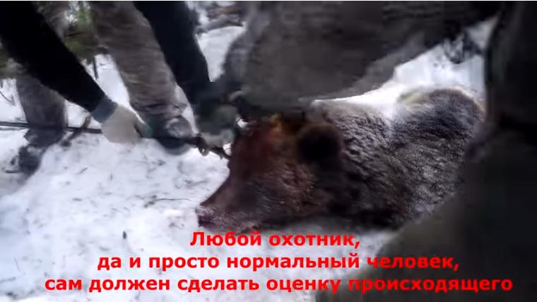 кадр из видео/YouTube/Дмитрий Ларин