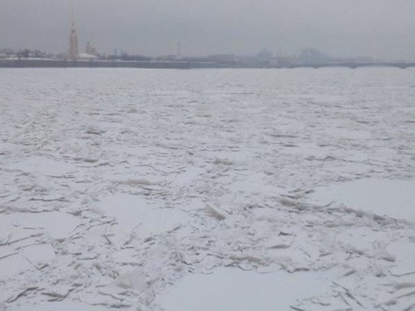 В Петербурге в выходные обещают ветер и мокрый снег